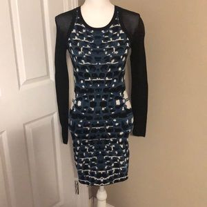 NWT Parker Bodycon Dress